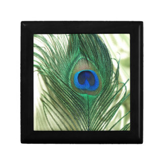 Green Apple Peacock Sill Life Gift Box