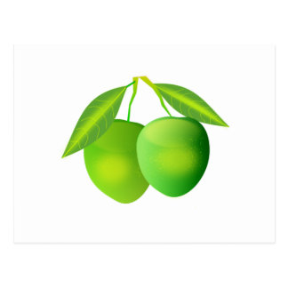 Green Apples Post Card