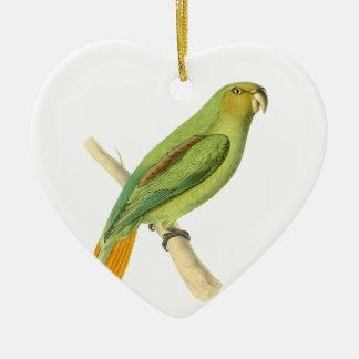 Green Aracari Bird Illustration by William Swainso Ceramic Heart Decoration