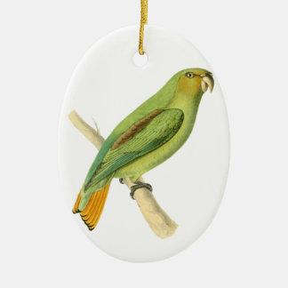 Green Aracari Bird Illustration by William Swainso Ceramic Oval Decoration