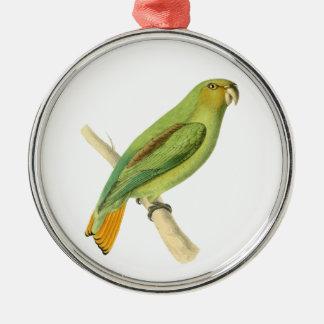 Green Aracari Bird Illustration by William Swainso Christmas Ornament