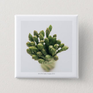 Green Asparagus 15 Cm Square Badge