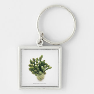 Green Asparagus Silver-Colored Square Key Ring