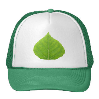 Green Aspen Leaf #11 Cap