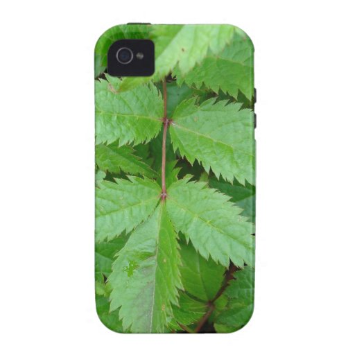 green Astilbe leaves Case-Mate iPhone 4 Cases