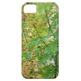 Green Autumn Barely There iPhone 5 Case
