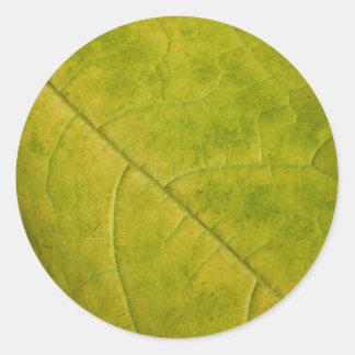 Green Autumn Leaf Photo Sticker