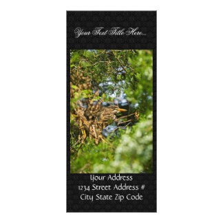 Green-backed heron in leaves personalized rack card