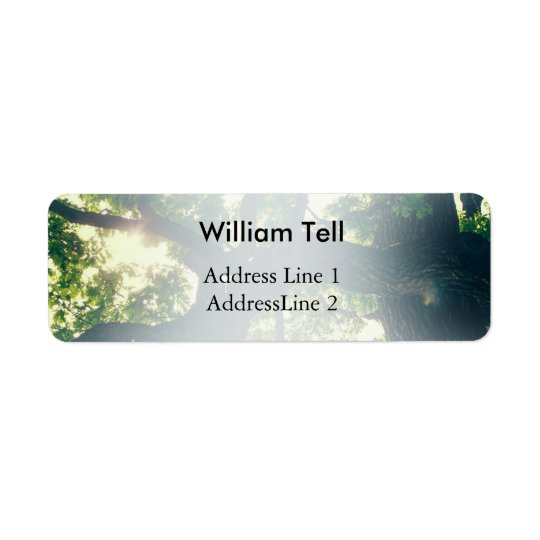 Green Backlit Tree, Sunlight Flora Return Address Label