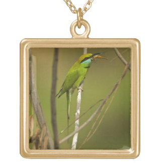Green Bee-eater eating insect Gold Plated Necklace