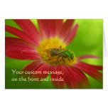 Green Bee & Painted Daisy Card