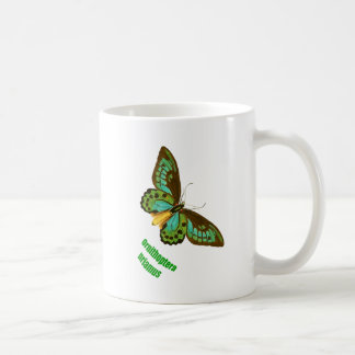 Green Birdwing Butterfly Coffee Mug
