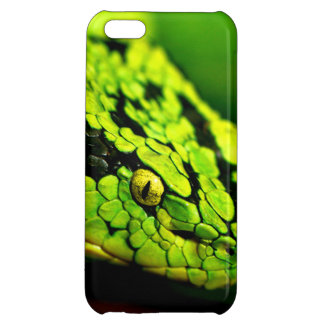 Green Black Stripe Snake Head iPhone 5C Case