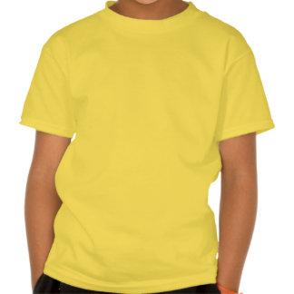 Green Blue Mandalla Tee Shirt
