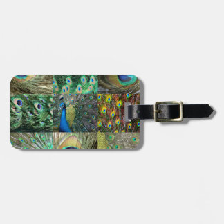Green Blue Peacock photo collage Luggage Tag