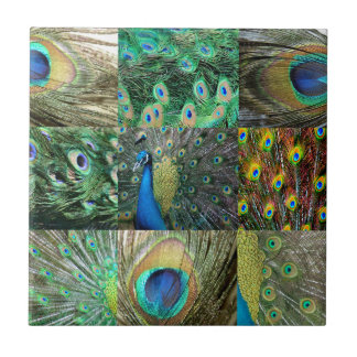 Green Blue Peacock photo collage Small Square Tile