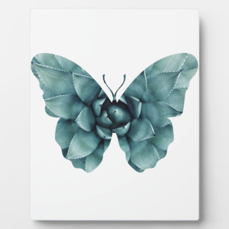 Green blue succulent butterfly silhouette photo plaque