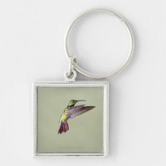 Green-breasted Mango Hummingbird Anthracocorax 2 Key Ring