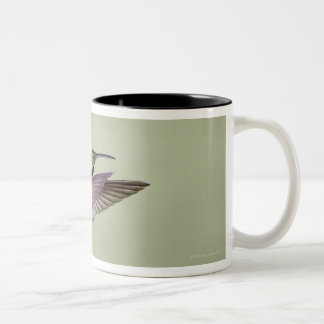 Green-breasted Mango Hummingbird Anthracocorax 2 Two-Tone Coffee Mug