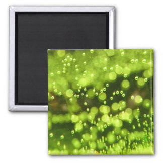 Green Bubbles Square Magnet
