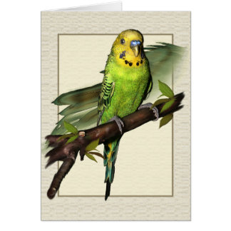 Green Budgie Art Greetings Card