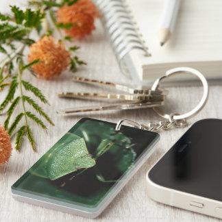 green bug key chains