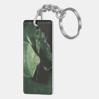 green bug rectangle acrylic keychain