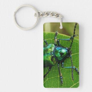 Green bug on green leaf rectangular acrylic key chains