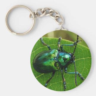 Green bug on green leaf key chain