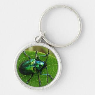 Green bug on green leaf key chains