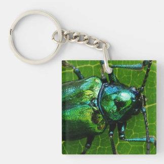 Green bug on green leaf square acrylic keychains