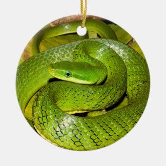 Green Bush Rat Snake Christmas Ornament