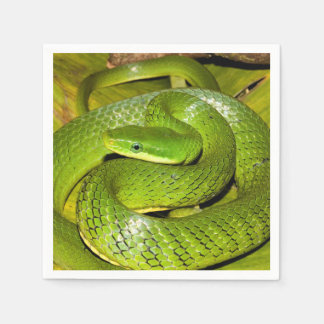 Green Bush Rat Snake Disposable Serviette