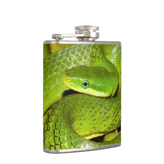 Green Bush Rat Snake Flask