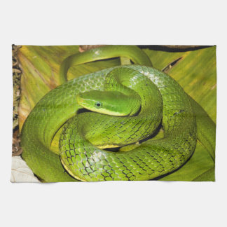 Green Bush Rat Snake Kitchen Towel