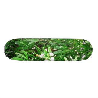 Green Bush With White Flowers Custom Skate Board