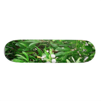 Green Bush With White Flowers Skate Board Deck