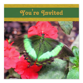 Green Butterfly Nature Invitation