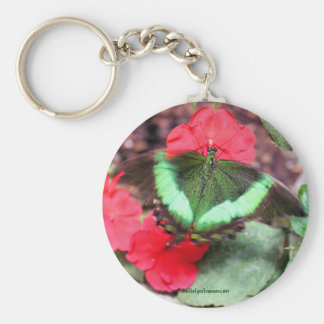 Green Butterfly Nature Photography Keychain