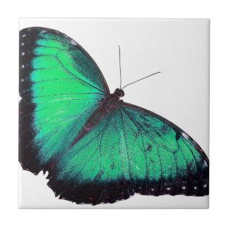 Green Butterfly Tiles