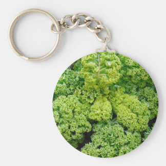 Green cabbage basic round button key ring