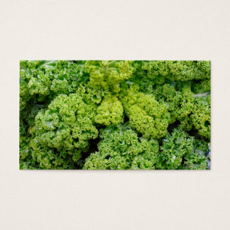 Green cabbage business card