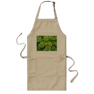 Green cabbage long apron
