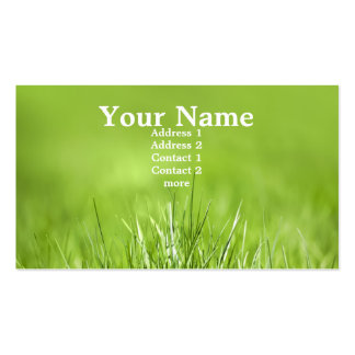 green card pack of standard business cards