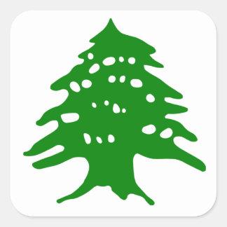 Green Cedar / Lebanon Cedar Square Sticker