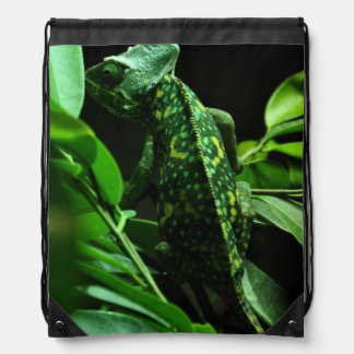 Green Chameleon In Leaves Drawstring Backpack