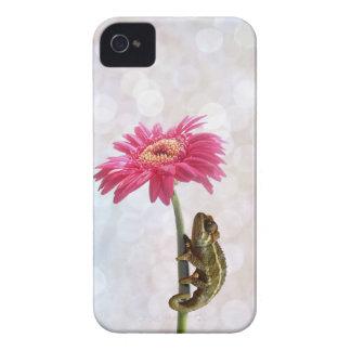 Green chameleon on pink flower Case-Mate iPhone 4 case