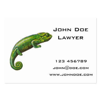 Green Chameleon Pack Of Chubby Business Cards