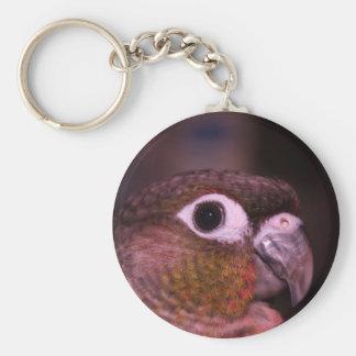 Green Cheek Conure Key Ring