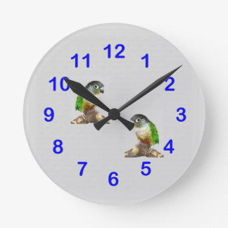 Green Cheek Conure Wall Clock